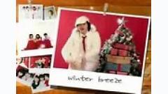 Winter Breeze - Xing Star
