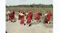 Tình Xuân - Various Artists