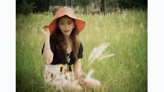 Cơn Mưa Đêm - Việt My