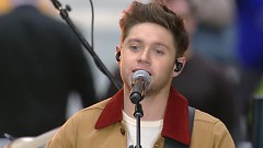 Too Much To Ask (Live) - Niall Horan