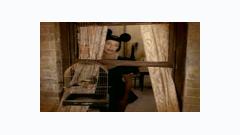 Waiting In Vain - Annie Lennox
