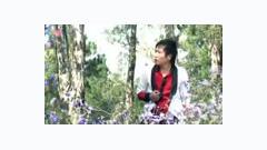 Tình Không Chung Lối - Lưu Bảo Huy