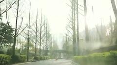 Jeukheungyeoncha (즉흥연차) - Tourist