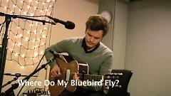 Where Do My Bluebird Fly (Live On KEXP) - The Tallest Man On Earth