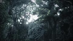 Aqua Terrarium - Yanagi Nagi