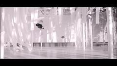 雨水一盒 / A Box Of Rain / Hộp Nước Mưa - Trần Ỷ Trinh