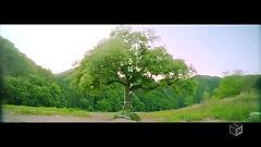 Taiyou Knock - Nogizaka46