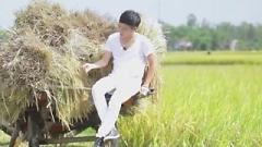Màu Xanh - Phạm Trưởng