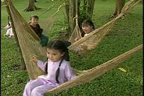 Tập Tầm Vong - Bé Ngọc Hân