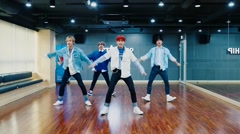LOVE IT LIVE IT (Dance Practice) - YDPP