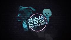 Gyeonseubsaeng (견습생) - Yang Brothers, Jeon JiYoon (4Minute)
