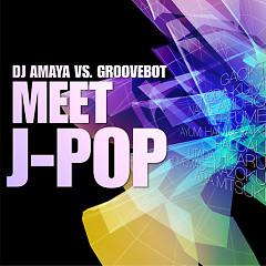 DJ AMAYA VS. GROOVEBOT