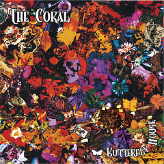 Butterfly House Acoustic - The Coral