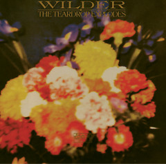 Wilder (2000 Reissue) (CD2) - The Teardrop Explodes