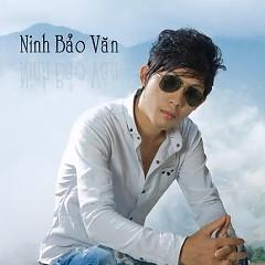 Ninh Bảo Văn