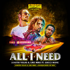 All I Need (DVLM X Bassjackers VIP MIX) - Dimitri Vegas, Like Mike