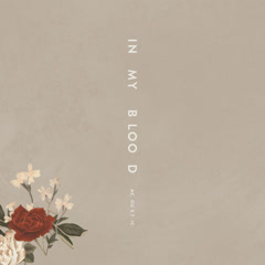 In My Blood (Acoustic) - Shawn Mendes
