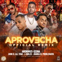 Aprovecha (Remix) - Anonimus