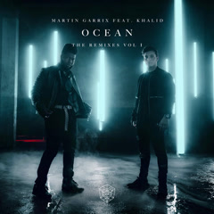 Ocean (Remixes, Vol. 1) - Martin Garrix