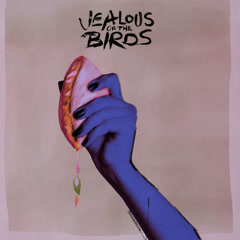 The Moths Of What I Want Will Eat Me In My Sleep (EP) - Jealous Of The Birds