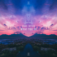What You Do (Single) - R3hab, Skytech