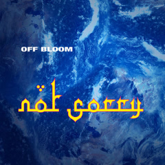 Not Sorry (Single) - Off Bloom