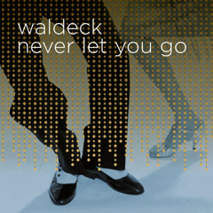 Never Let You Go (Single) - Waldeck