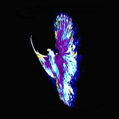 Marco (The Phoenix) (Single) - JJamny