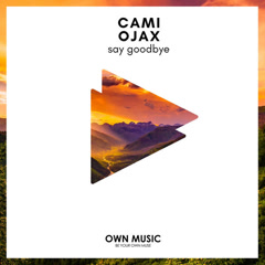 Say Goodbye (Single)