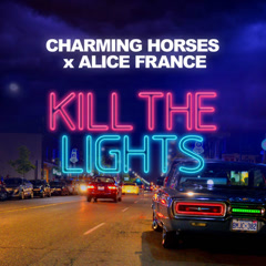 Kill The Lights (Single)