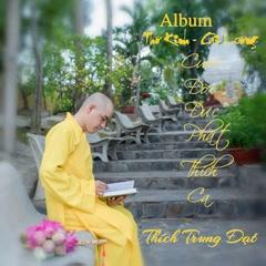 Cuộc Đời Đức Phật Thích Ca (Single) - Thích Trung Đạt
