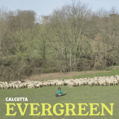 Evergreen - Calcutta