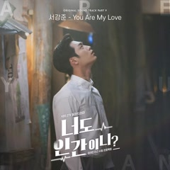 Are You Human? OST Part.9