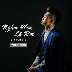 Ngắm Hoa Lệ Rơi (Remix) (Single) - Thái Sơn