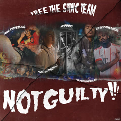 Not Guilty!!! - Free The Stinc Team