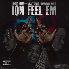 Ion Feel 'Em (Single)