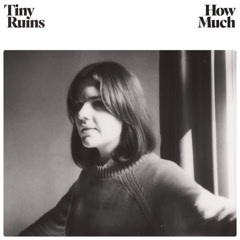 How Much (Single) - Tiny Ruins