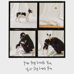 Your Dog Loves You (Single) - Colde