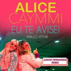 Eu Te Avisei (Junior Fernandes Remix)