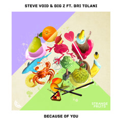 Because Of You (Single) - Steve Void
