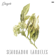 Sembrando Laureles