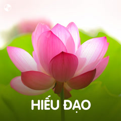 Hiếu Đạo - Various Artists