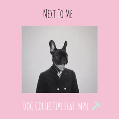 Next To Me (Single) - Dog Collective