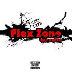 Flex Zone (Single)