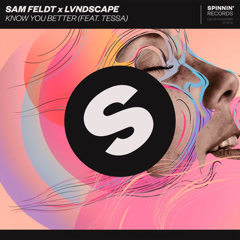 Know You Better (Single) - Sam Feldt, LVNDSCAPE