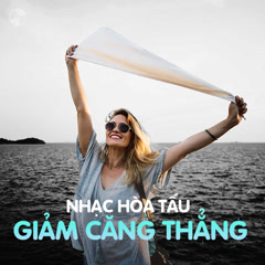 Album Nhạc Hòa Tấu Giảm Căng Thẳng - Various Artists