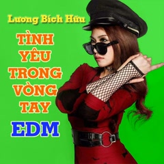 Tình Yêu Trong Vòng Tay (EDM) (Single) - Lương Bích Hữu