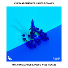 Only One (ANGUS & Piece Wise Remix) - Vmk, Arcando