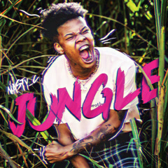 Jungle (Single) - Nasty C