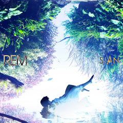 REM - SIAN